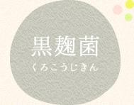 黒麹菌(くろこうじきん)