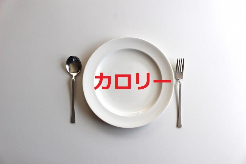 kouji-diet3